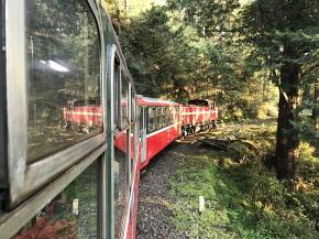 阿里山鉄道祝山線
