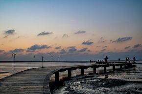 高美湿地の桟橋